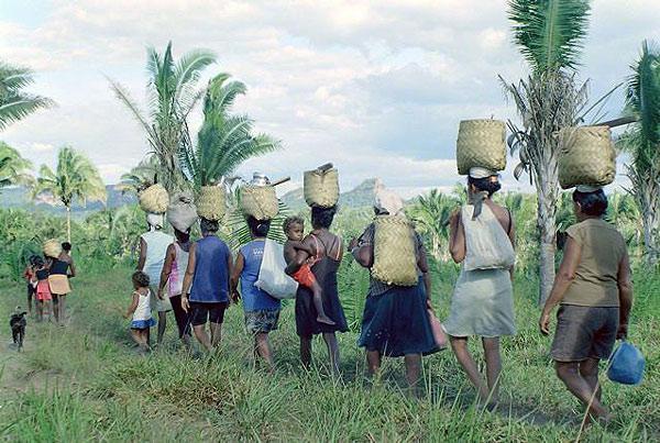 Evento internacional debate a situação dos povos e comunidades tradicionais
