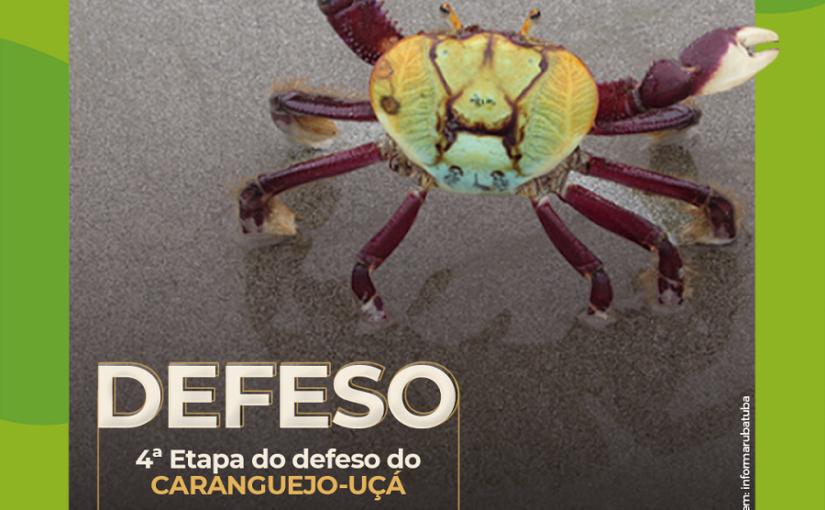 Defeso do caranguejo-uçá entra na quarta etapa dia 29