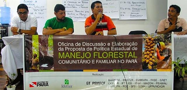 Por uma política de manejo florestal de base comunitária no Pará: série de reportagens recupera saga de quase dez anos de luta