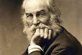 Horror e esplendor nas caminhadas de Walt Whitman pela América
